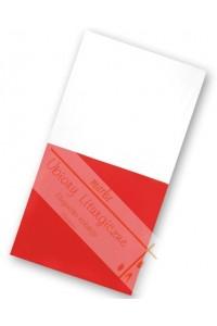 Flaga F3